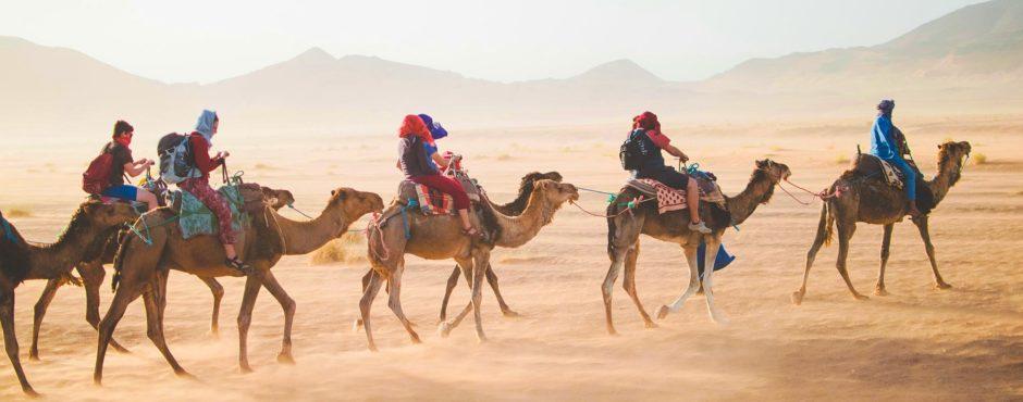 тур-в-египет