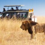 сафари-тур-в-кению